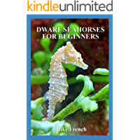 Dwarf Seahorses For Beginners
