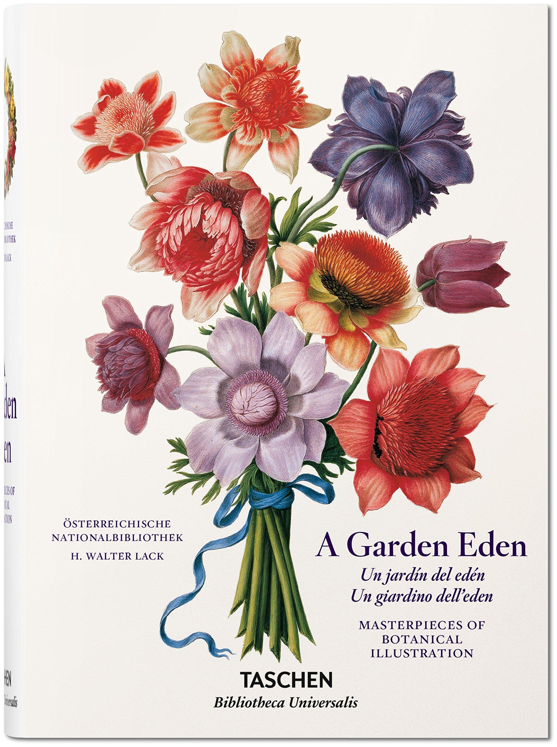 Maravillas De La Botánica Láminas Para Enmarcar Posters Art: Amazon ...