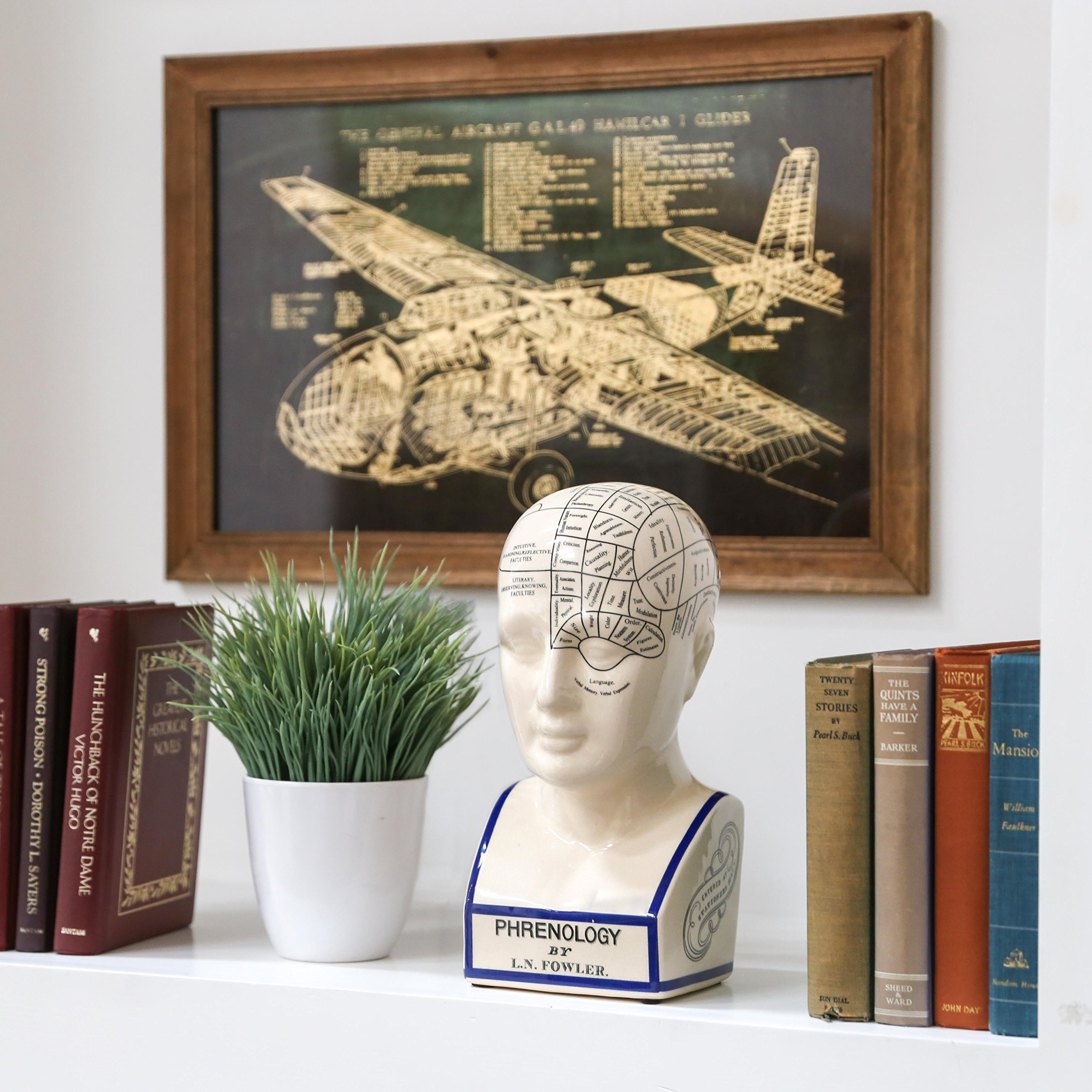 Urban Trends Ceramic Phrenology Head Bust, Small, Gloss White