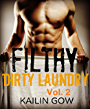 FILTHY DIRTY LAUNDRY (A Stepbrother Romance) Vol. 2