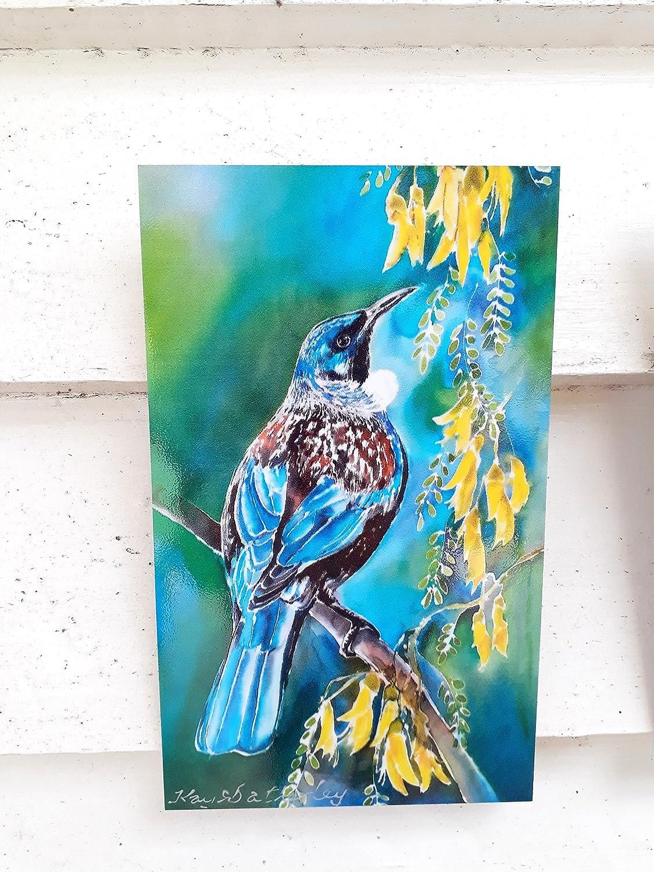 Amazon Com New Zealand Tui Bird Outdoor Wall Art Tile From My