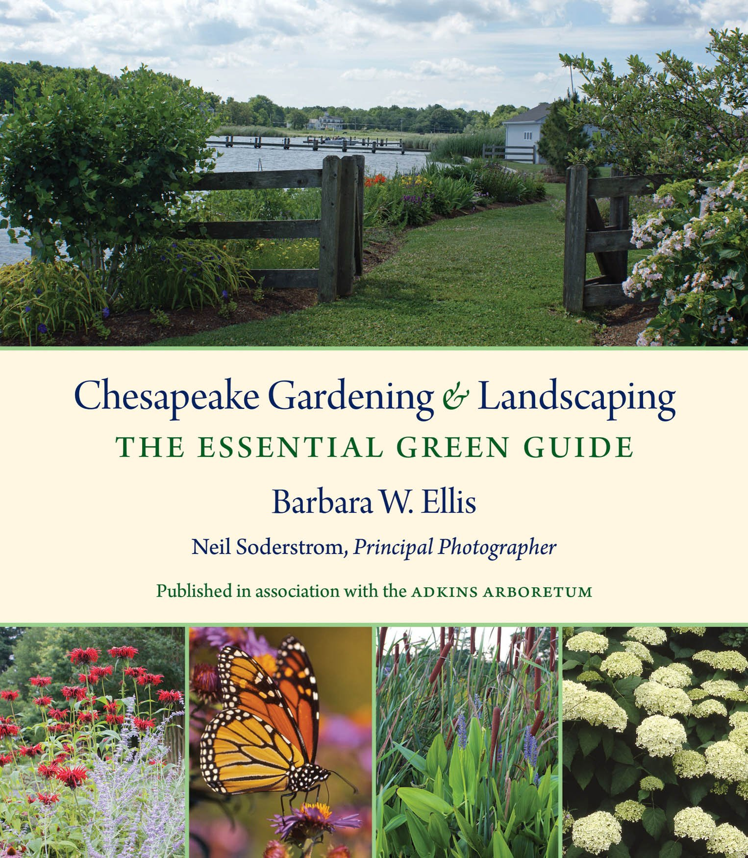 Chesapeake gardening and landscaping the essential green guide chesapeake gardening and landscaping the essential green guide barbara w ellis neil soderstrom 9781469620978 amazon books workwithnaturefo