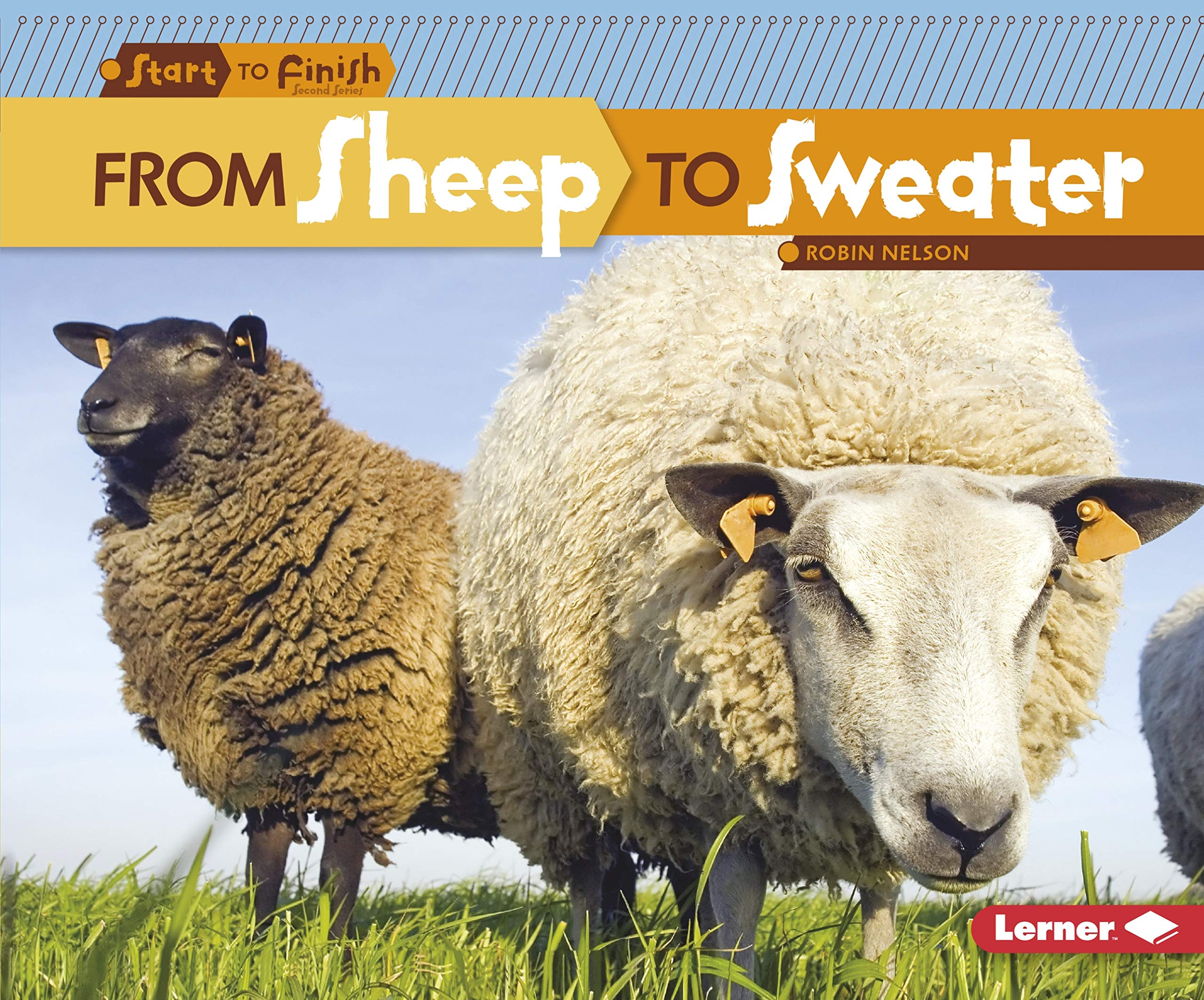 Download From Sheep to Sweater (Start to Finish, Second Series: Everyday Products) ebook