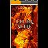 FeuerSeele: Chroniken von Quiliaris 1