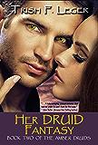 Her Druid Fantasy (The Amber Druid Series Book 2)