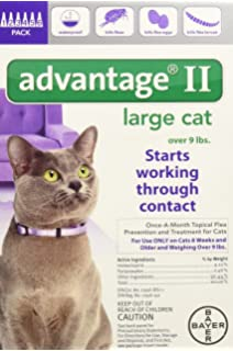 Bayer Animal Health Advantage II for Large Cats Over 9lbs - 6 Month