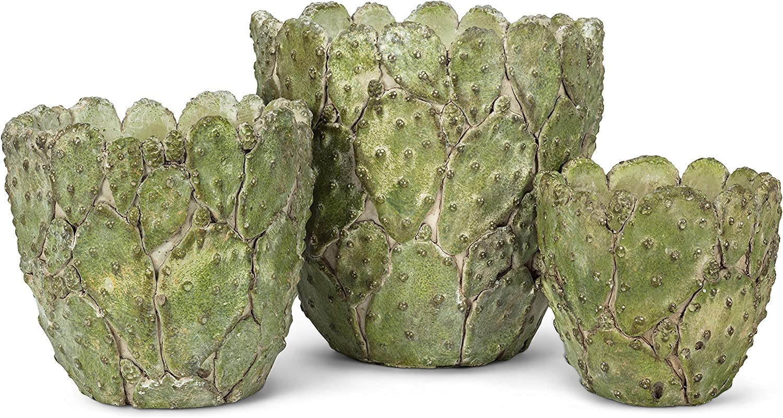 Abbott Collection 27-Prickly-XS XSM Gr/üner Kaktus-/Übertopf 12,7 cm