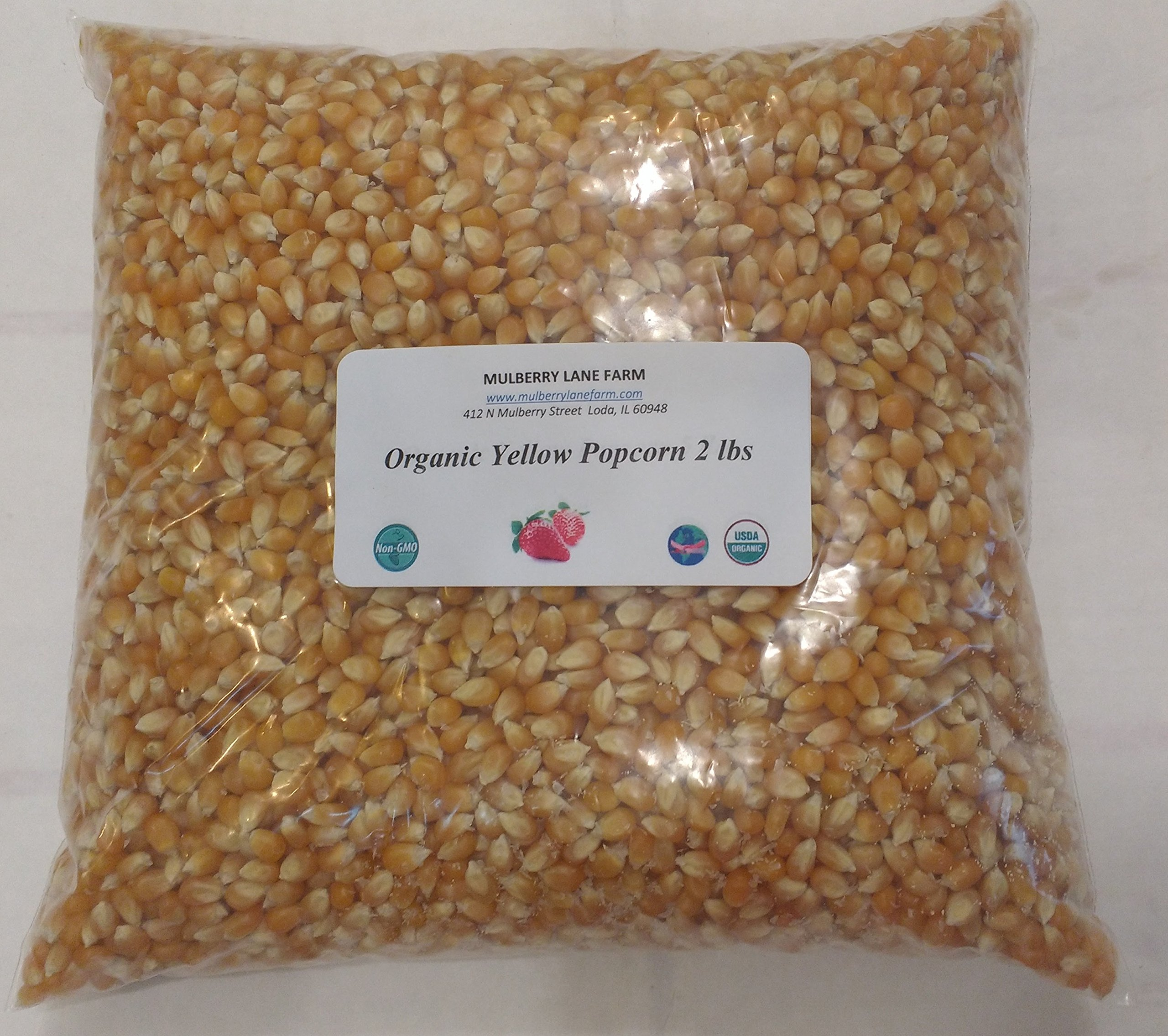 Yellow Popcorn Seeds 2 lbs (two pounds) Kernels, USDA Certified Organic, Non-GMO, BULK.