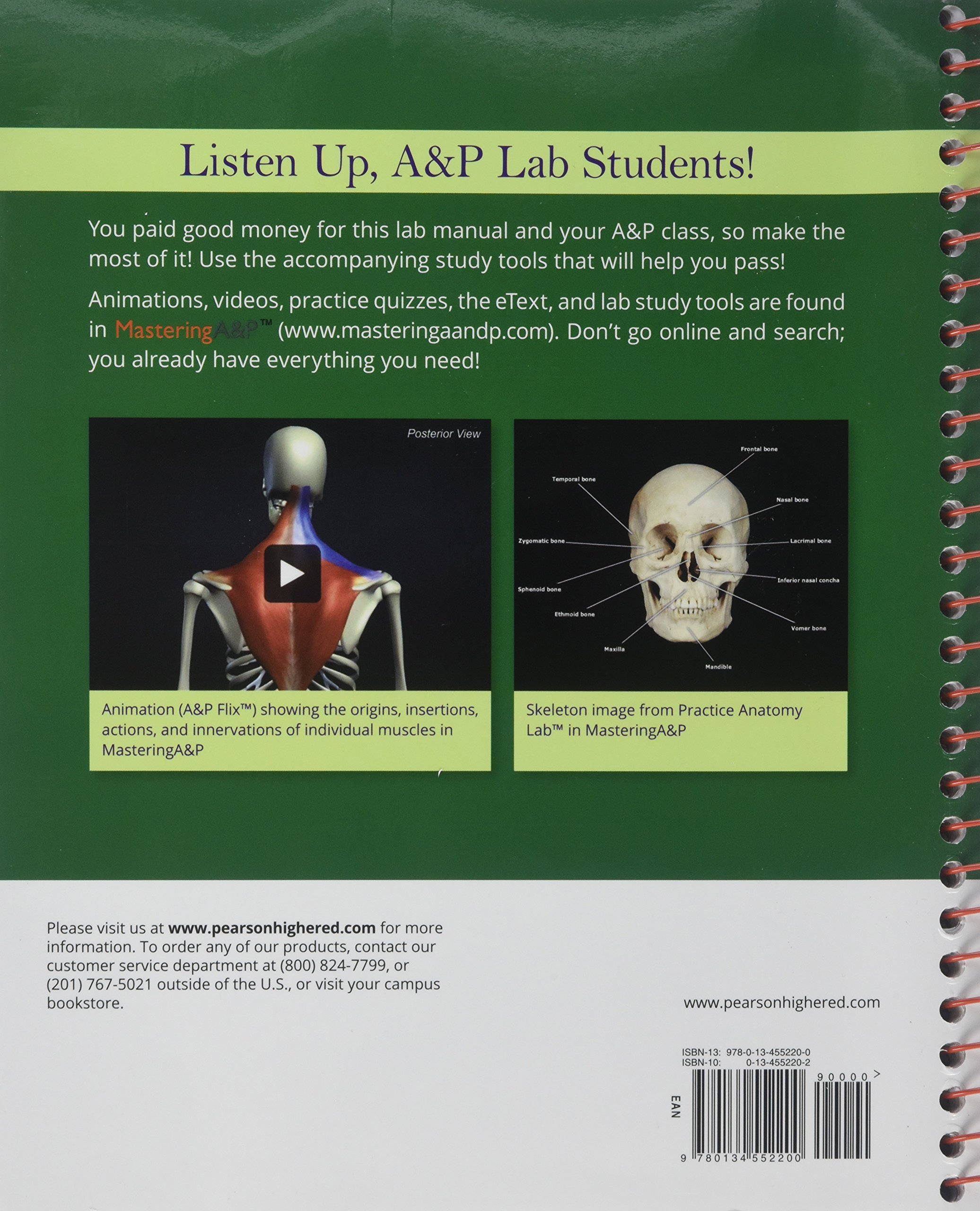 Atractivo Laboratory Investigations In Anatomy And Physiology 2nd ...