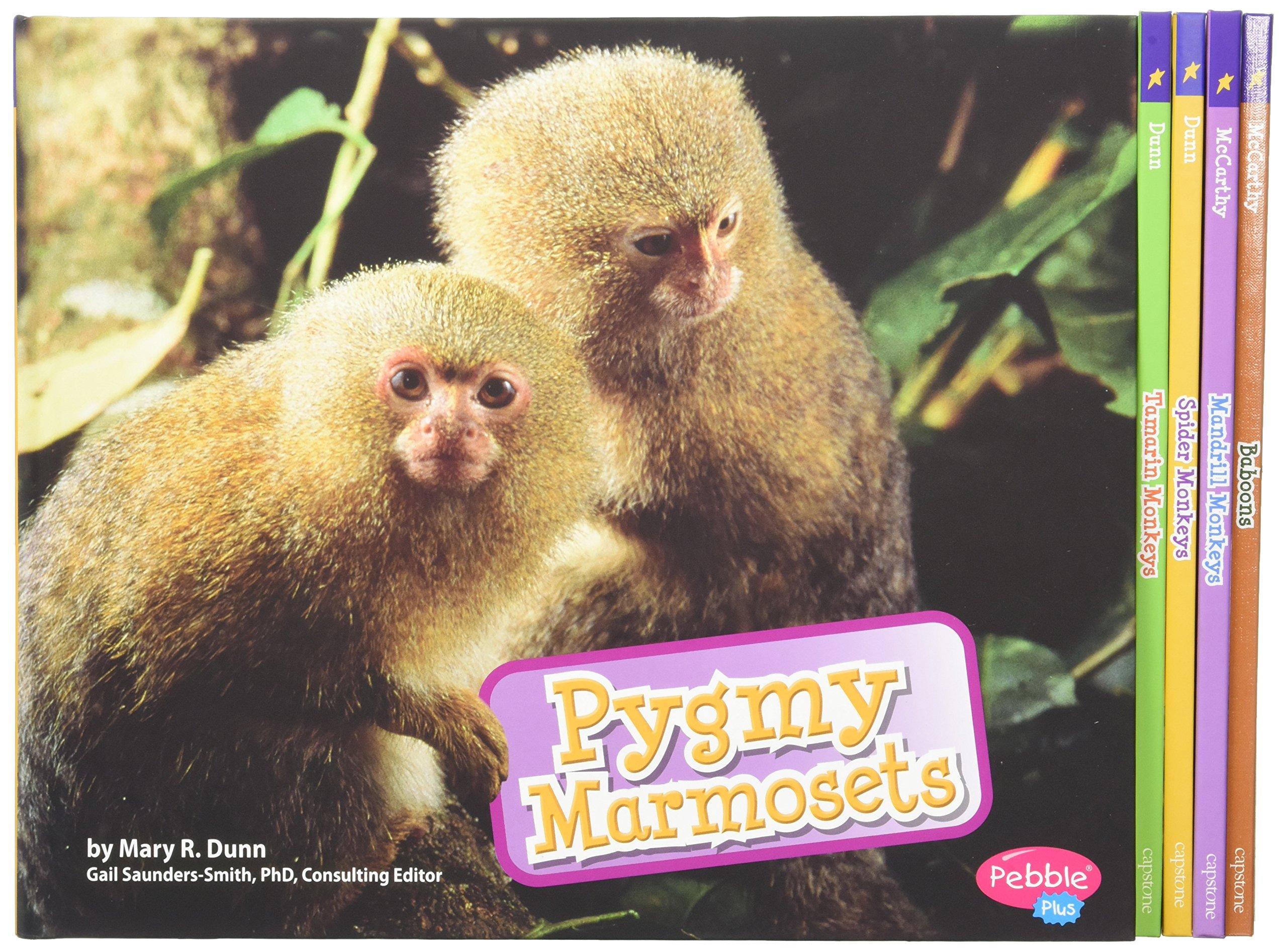 Monkeys: Cecilia Pinto McCarthy, Gail Saunders-Smith