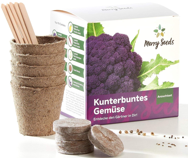 Merry Seeds Kunterbuntes Gemüse Anzuchtset - Außergewöhnliche Gemüse Samen inkl. Anzucht-Töpfen, Erde, Saatgut und Anleitung - Pflanzset Geschenk für Garten und Balkon