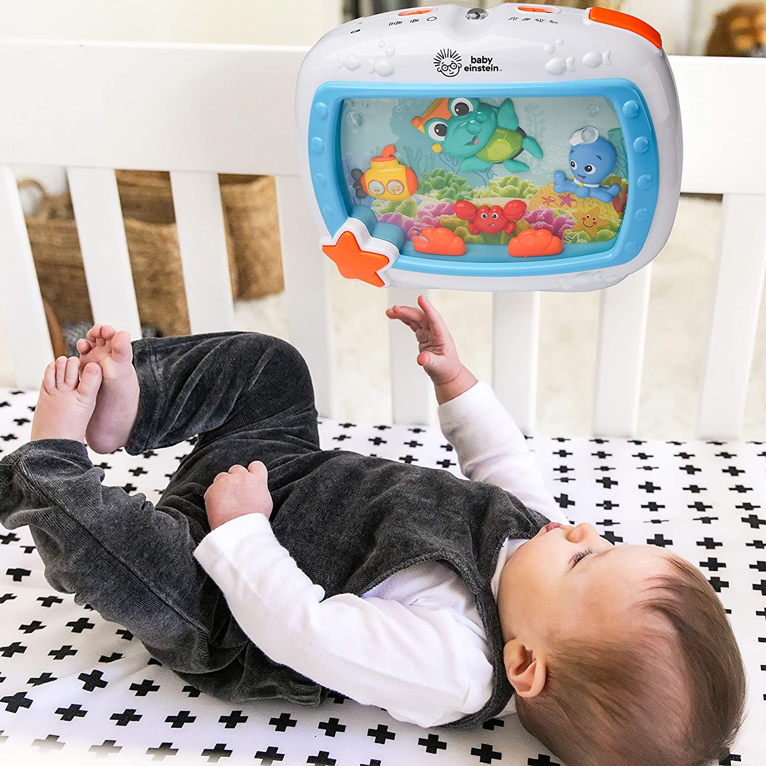 Amazon.com: Baby Einstein Sea Dreams - Calmante de juguete ...