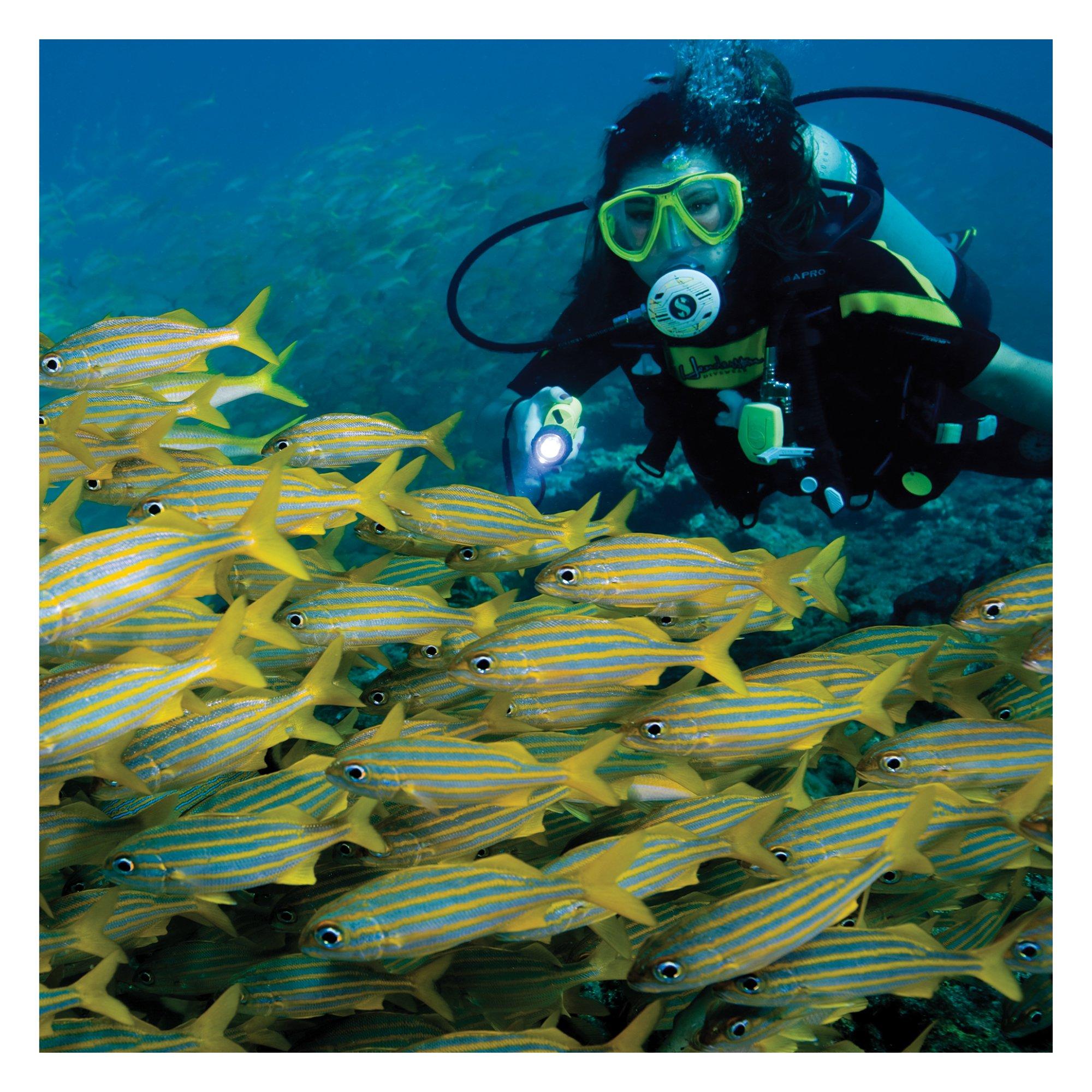 Underwater Kinetics SL4 eLED (L1) Dive Light, Fathom Blue