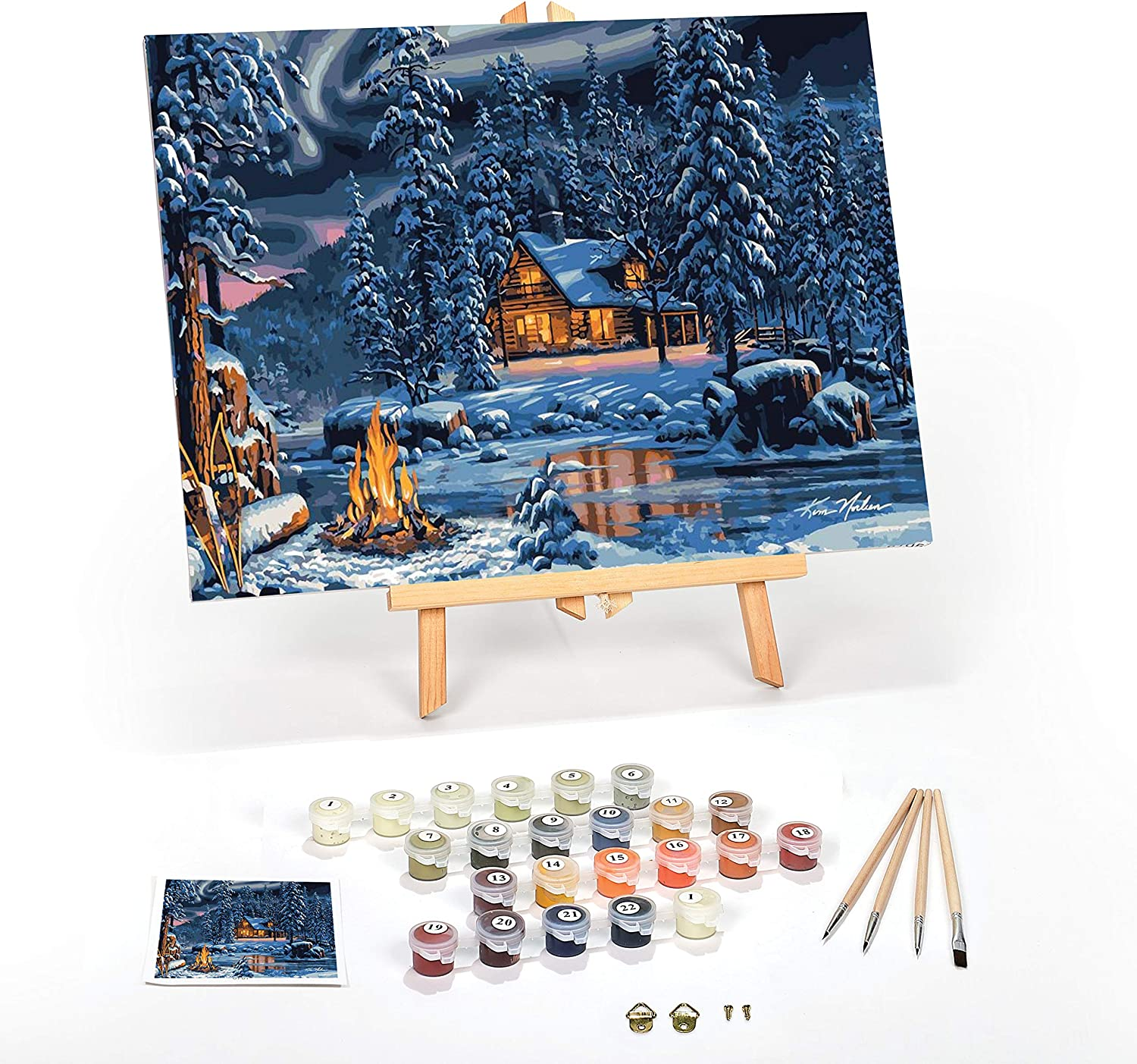 Paint By Numbers DIY Acrylic Painting Kit for Kids /& Adults 40X45cm Firefly F NI
