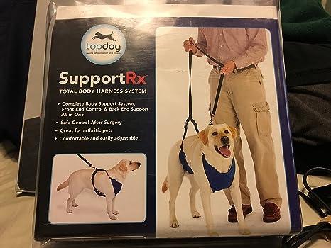 Arnés integral para perro: Amazon.es: Productos para mascotas