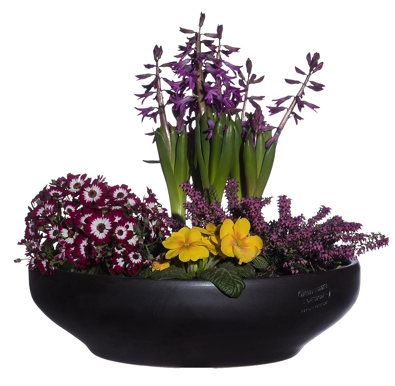 Meuble Salle De Bain Acheter ~ pot the fleur coupe anthracite 32 x 8 cm tanche forme 039 032