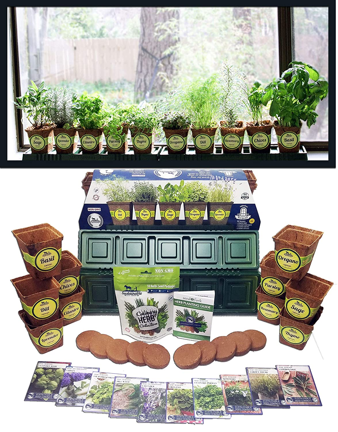 Windowsill Herb Garden Kit, Herb Planter Comes Complete with a 10 Variety Non GMO Heirloom Herb Seed Collection & Herb Pots. windowsill herb garden