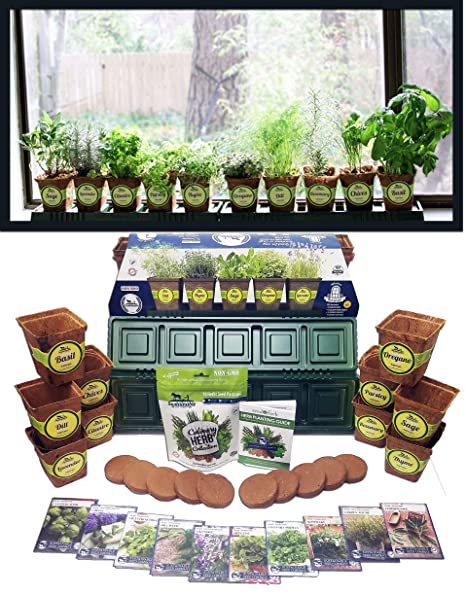 windowsill herb garden kit herb planter comes complete with a 10 variety non gmo heirloom - Outdoor Herb Garden