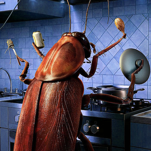 cockroaches-in-the-kitchen