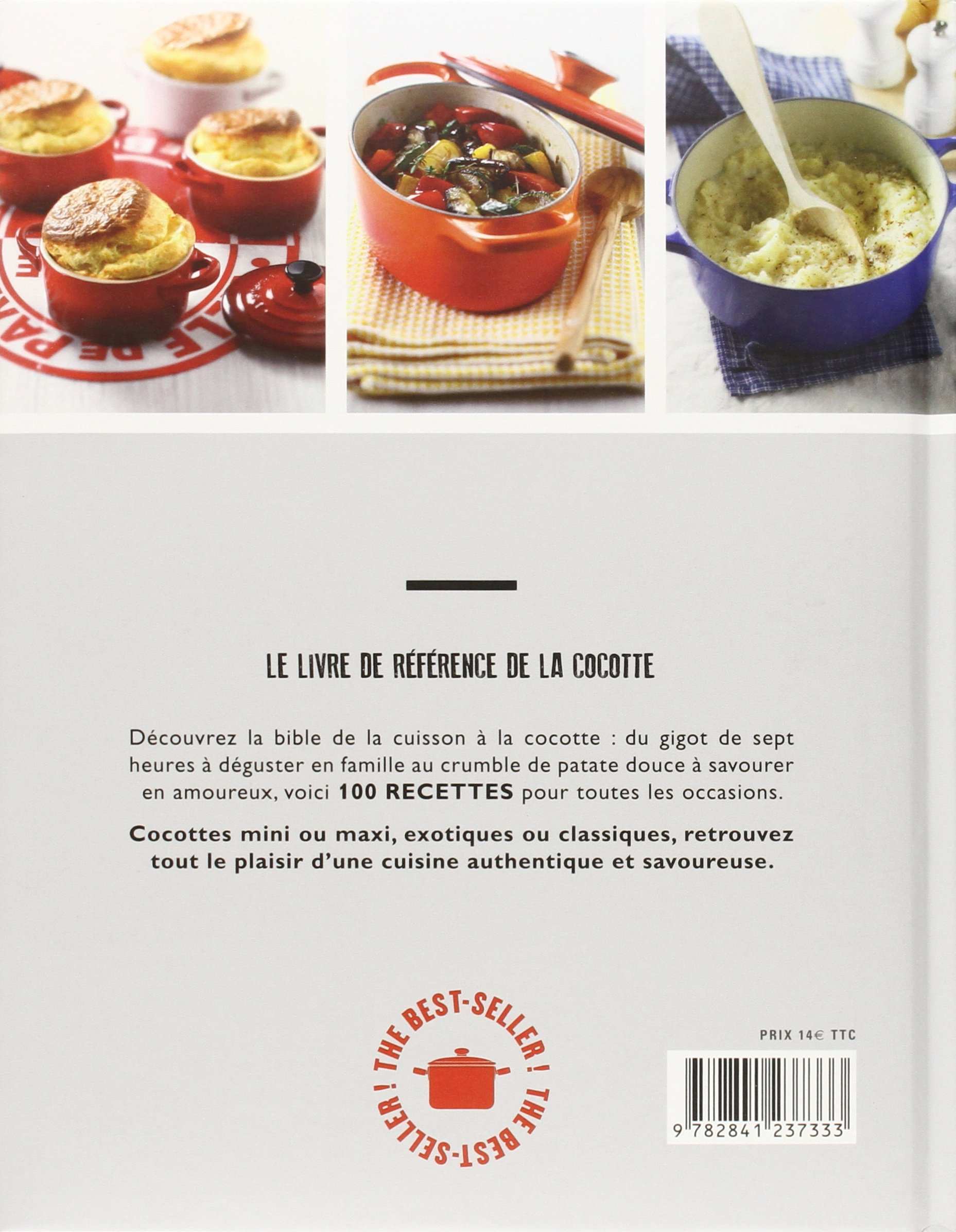 Cocotte cook book - 100 mini & maxi cocottes: 9782841237333: Amazon.com:  Books