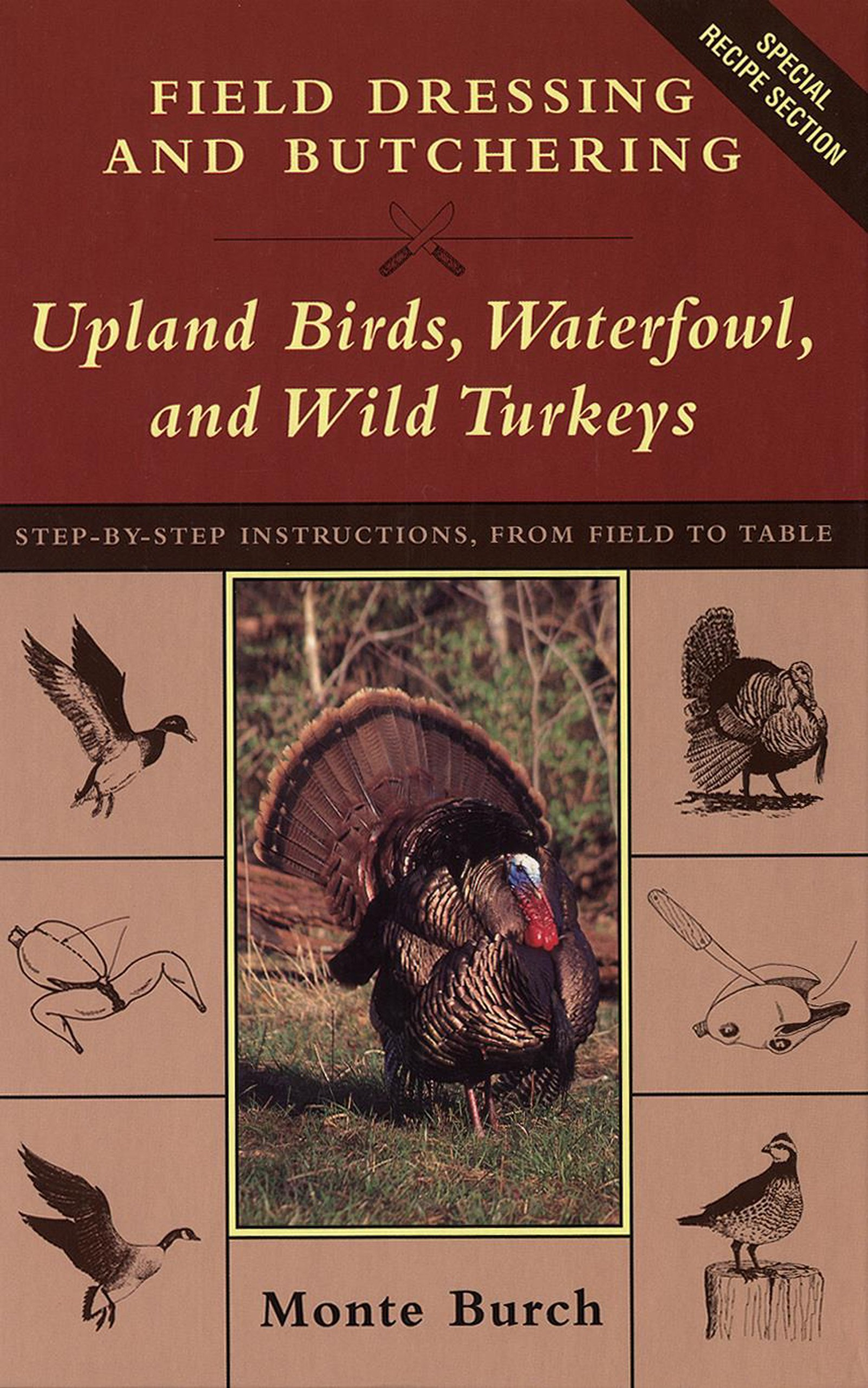 Download Field Dressing and Butchering Upland Birds, Waterfowl, and Wild Turkeys pdf