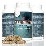 TRIBULUS TERRESTRIS de Vegavero | 120 cápsulas con 95% de saponina | testosterona-masa muscular-energía | suplemento puro natural vegano