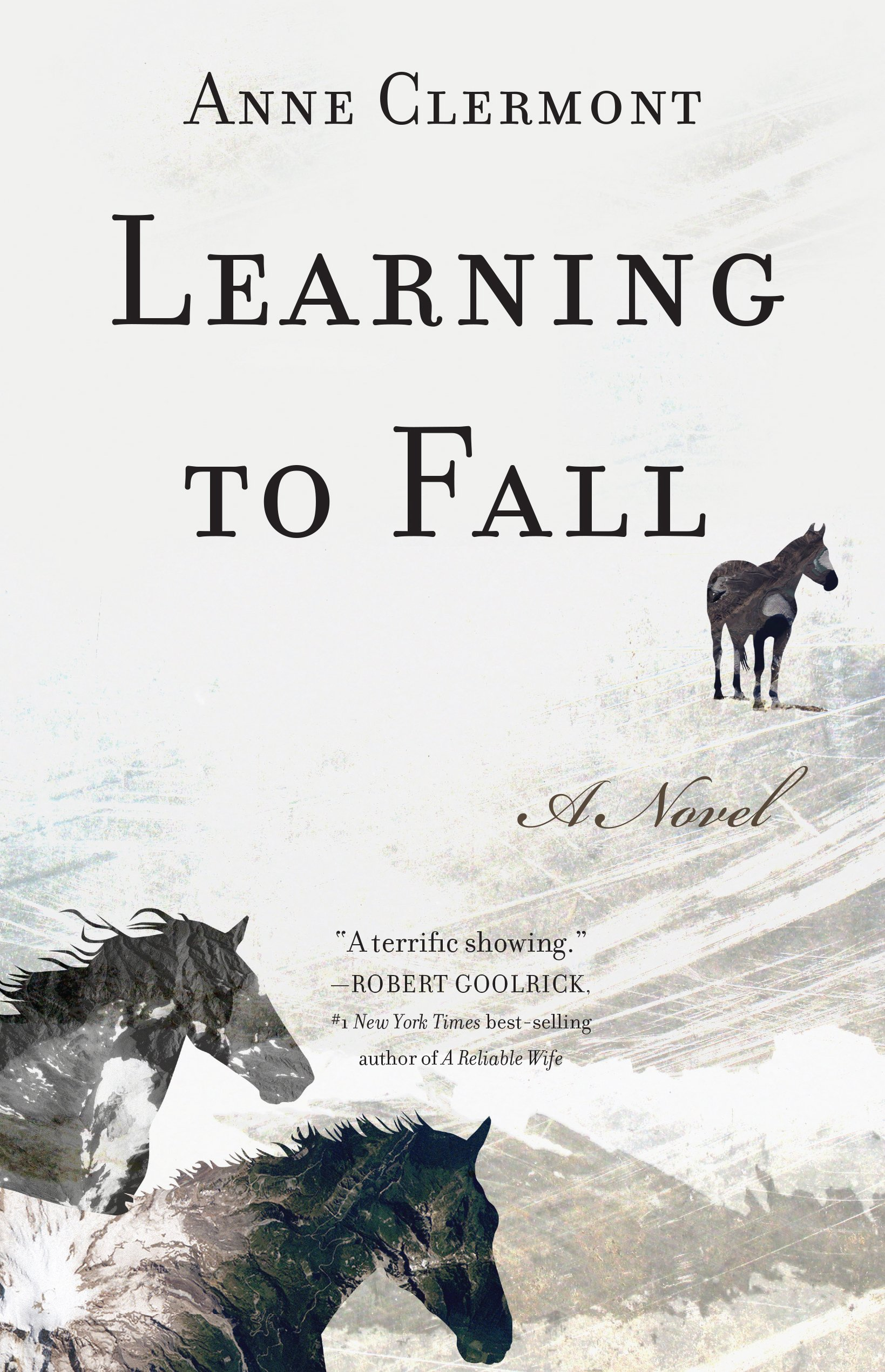 Learning To Fall: A Novel: Anne Clermont: 9781940716787: Amazon: Books