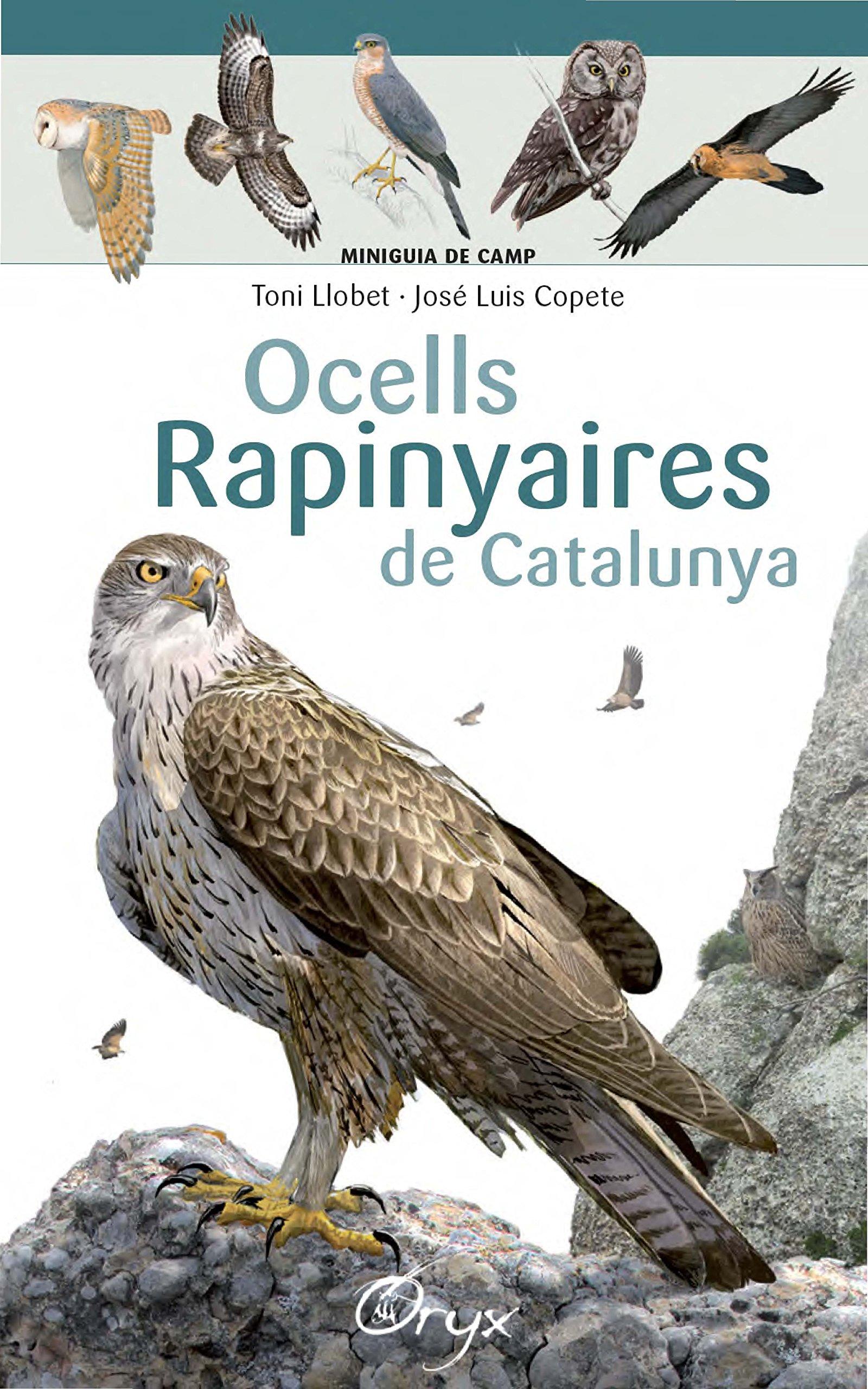 Ocells Rapinyaires De Catalunya (Miniguia de camp): Amazon.es: Llobet François, Toni, Copete, José Luis: Libros