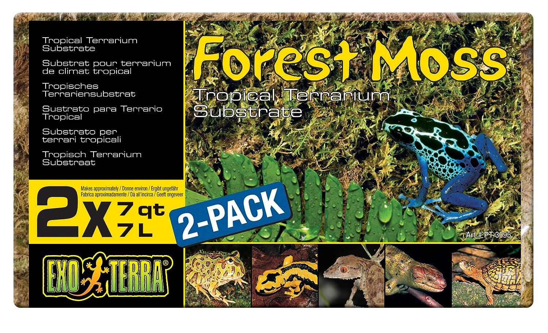 Exo terra Set de 2 Substrats Mousse de Forêt pour Reptile/Amphibien 7 L Exoterra PT3095