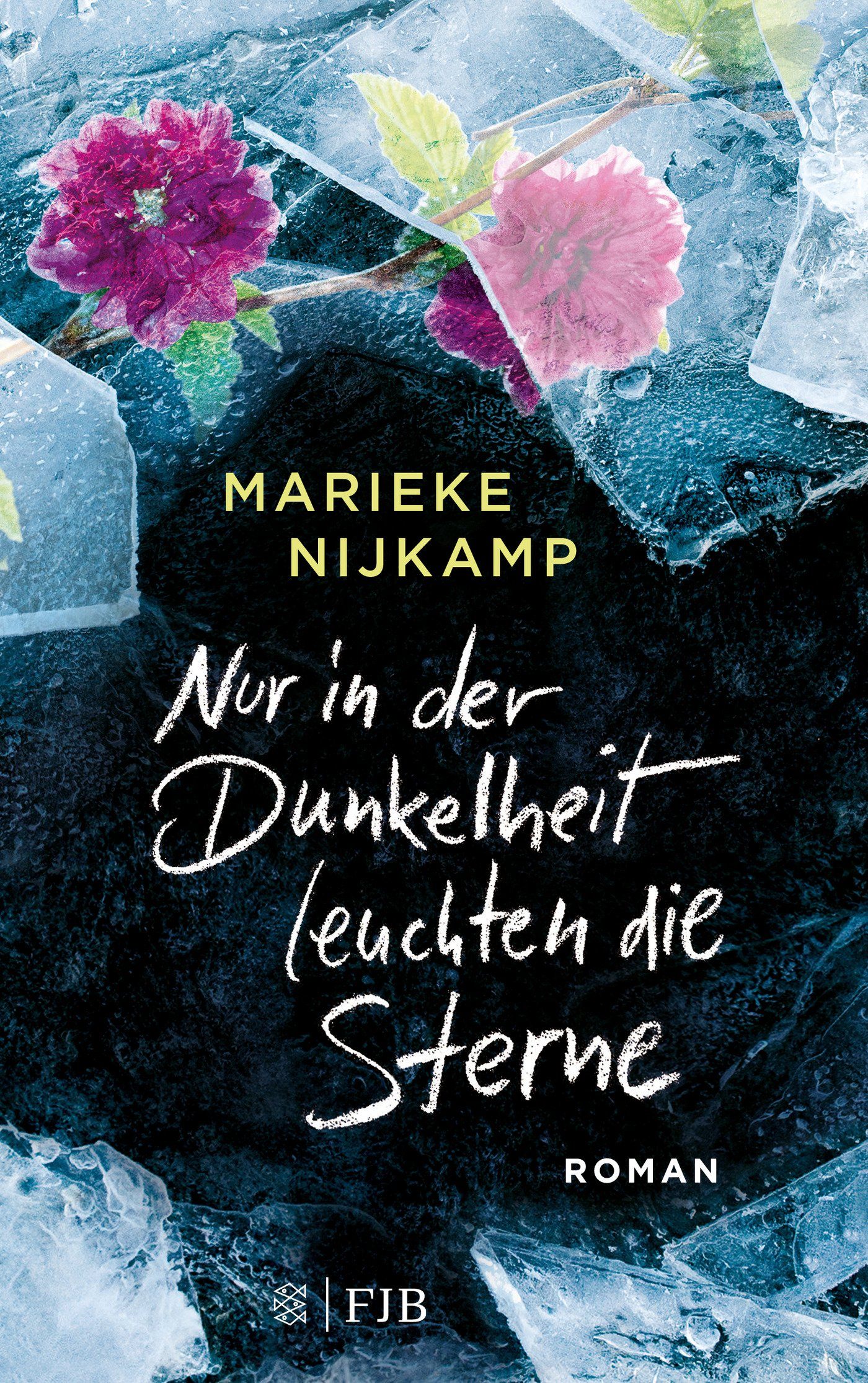 Nur in der Dunkelheit leuchten die Sterne: Roman Broschiert – 24. Oktober 2018 Marieke Nijkamp Mo Zuber FISCHER FJB 3841440266
