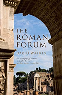 david watkin morality and architecture