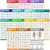 14-Pack Laminated Large Workout Poster Set - Perfect Workout Posters For Home Gym - Exercise Charts Incl. Dumbbell, Yoga…