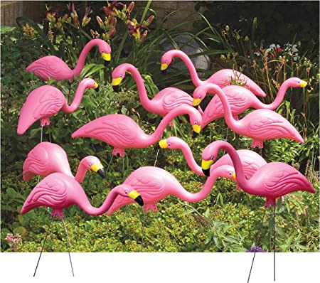 0g The Flamingo  plugs GaugesTentacle plug 8g 916 12 38 2g 00g 58 6g 34