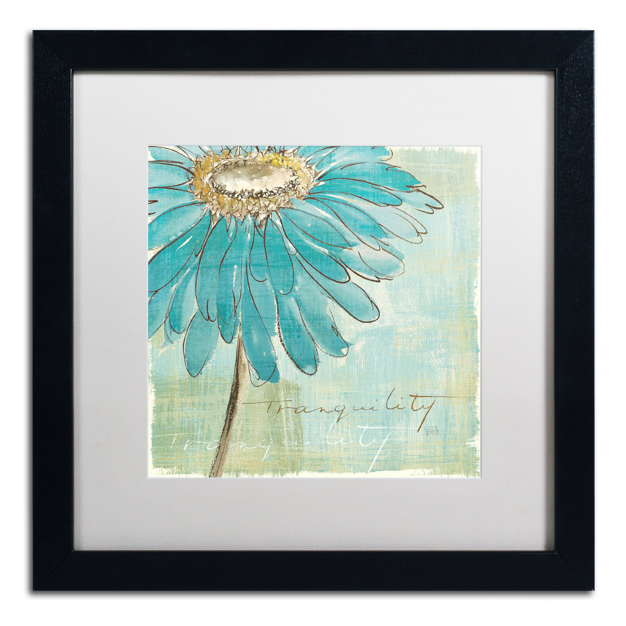 Spa Daisies III Artwork by Chris Paschke, 16 by 16-Inch, Matte White/Black Frame