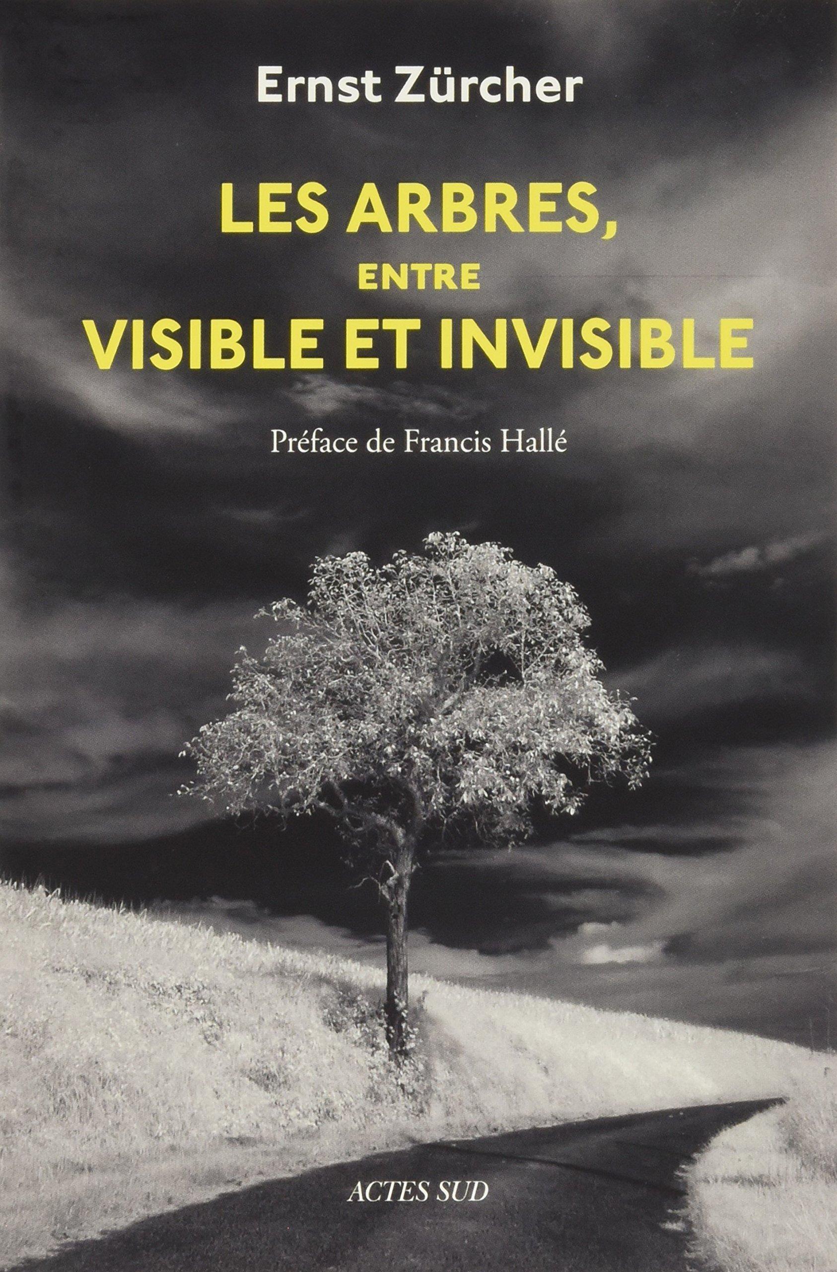 Tras la senda de Thoreau: libros, ensayos, documentales etc de vida salvaje y naturaleza. - Página 2 91IdgFCeGnL