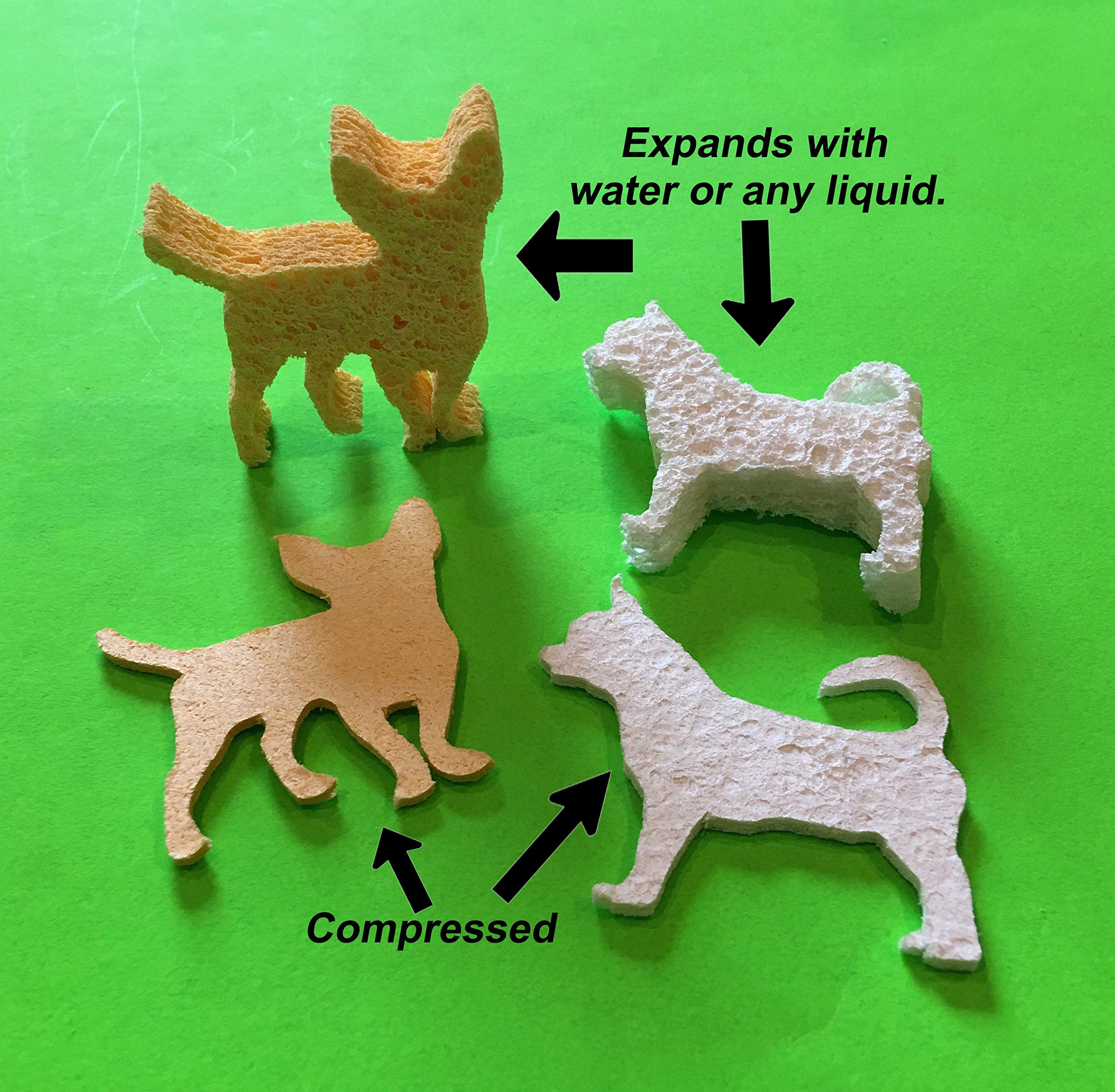 Chihuahua Compressed Sponges -2 Varieties - Pack of 12