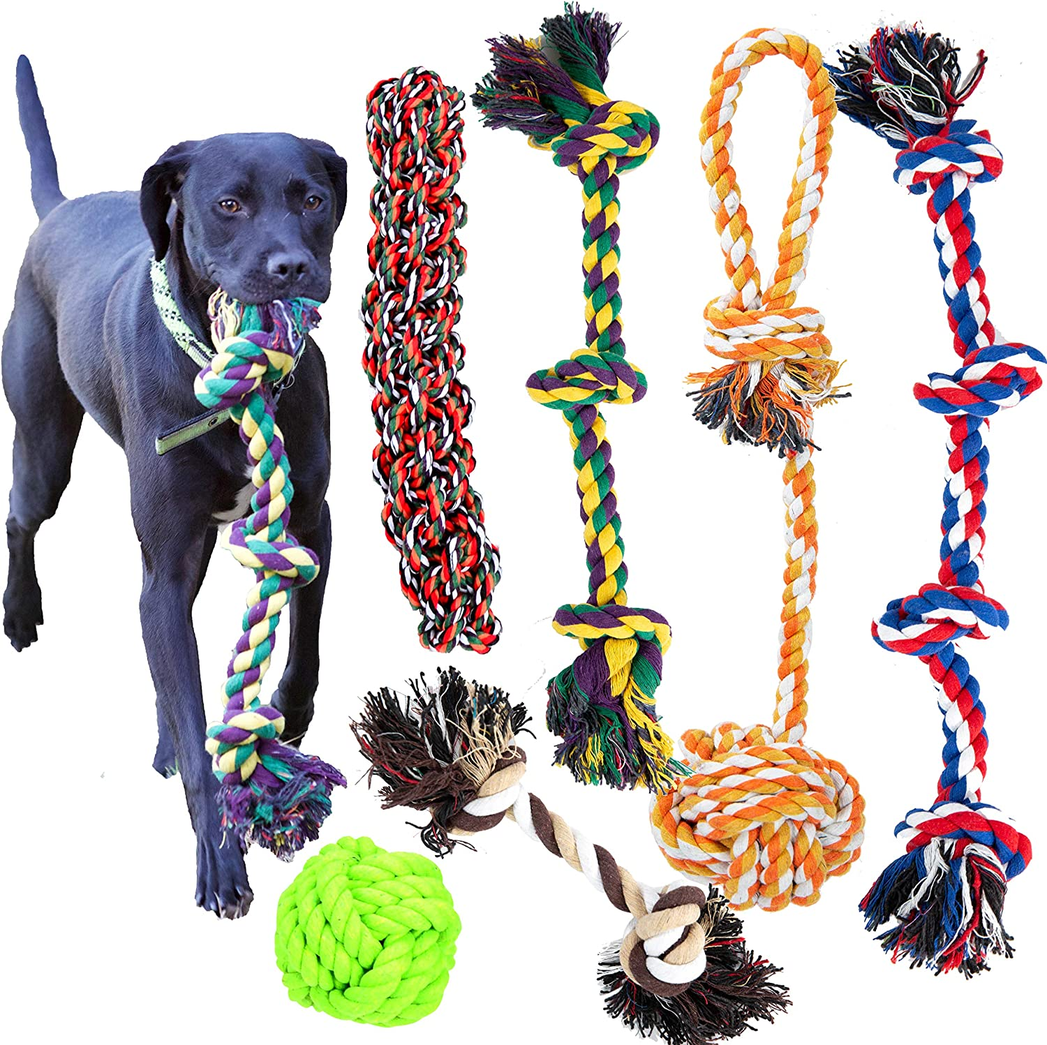Youngever 6 Pack Dog Rope Toy