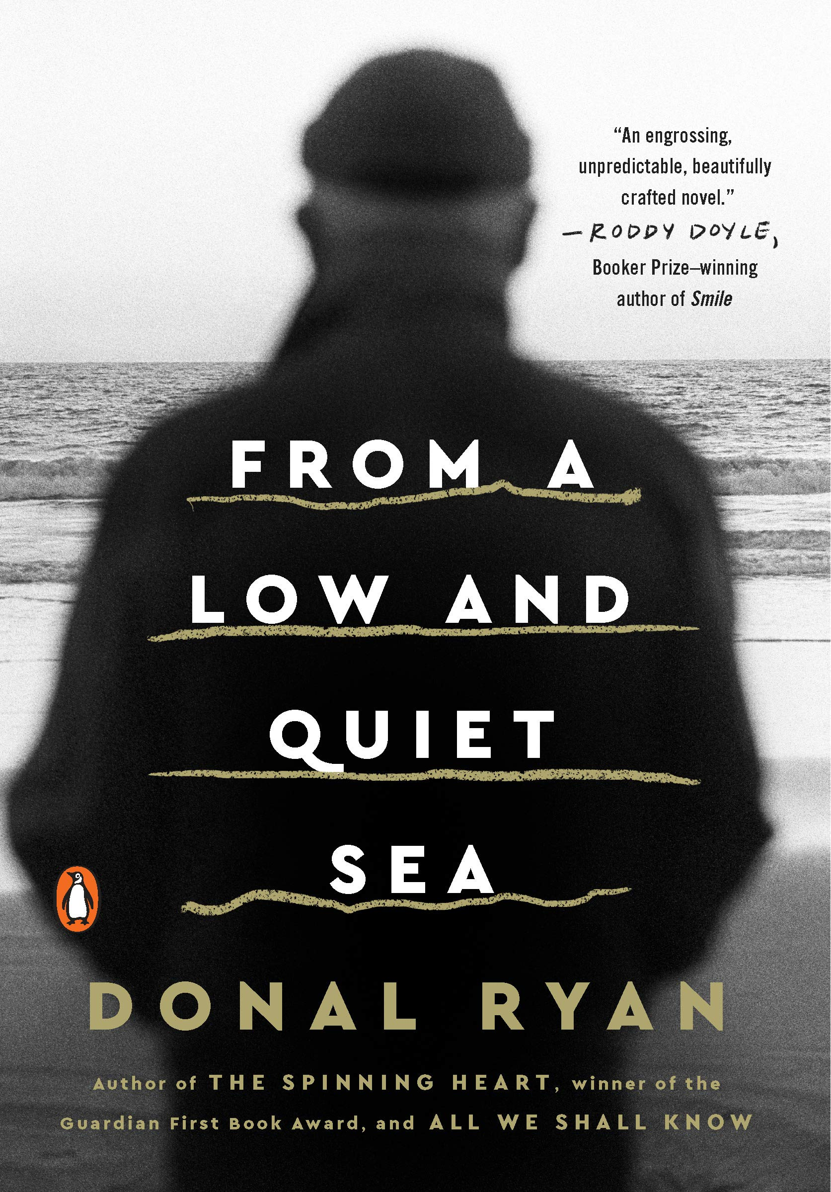 From a Low And Quiet Sea: Amazon.es: Ryan, Donal, Ryan, Donal ...