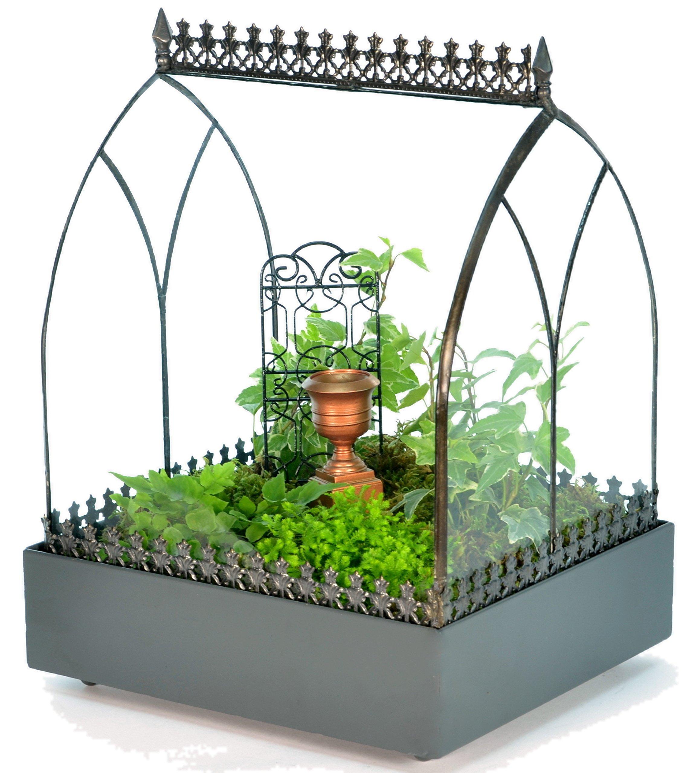 H Potter Terrarium Wardian Case Glass Succulent Plant Container Planter WAR142 by H Potter