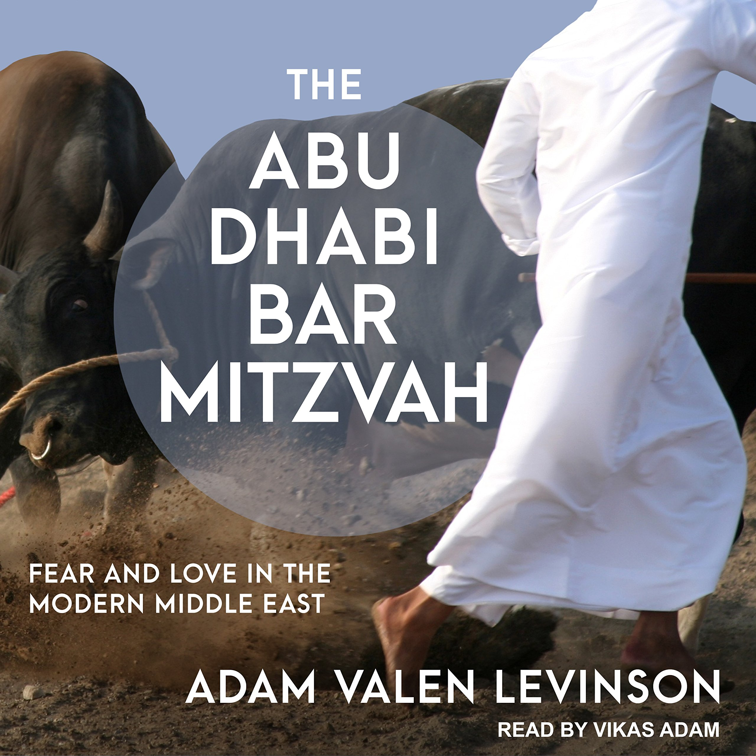 The abu dhabi bar mitzvah fear and love in the modern middle east the abu dhabi bar mitzvah fear and love in the modern middle east adam valen levinson vikas adam 9781541457683 amazon books fandeluxe Gallery