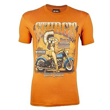 79c303c8 Harley-Davidson Sturgis Men's Native Lady Short Sleeve T-Shirt (3XL, Texas