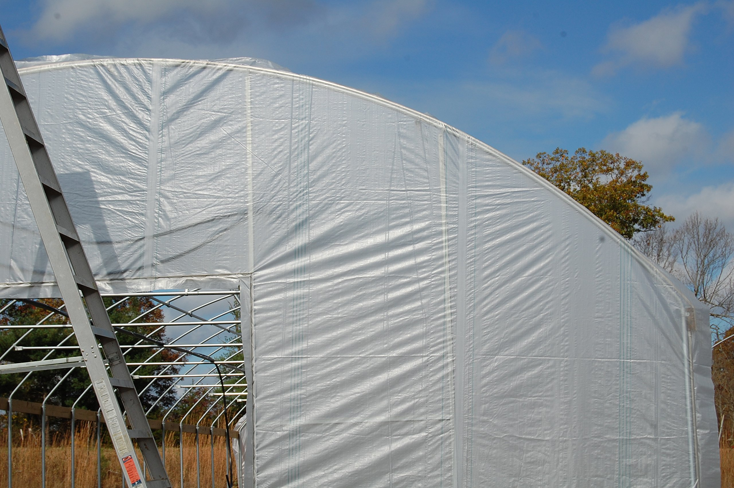 Greenhouse Clear Plastic Film Polyethylene Covering Gt4 Year 6 Mil 40ft. X 55ft. By Grower's Solution