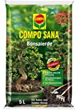 Compo Sana Bonsai 1160212004 Terra, 5L