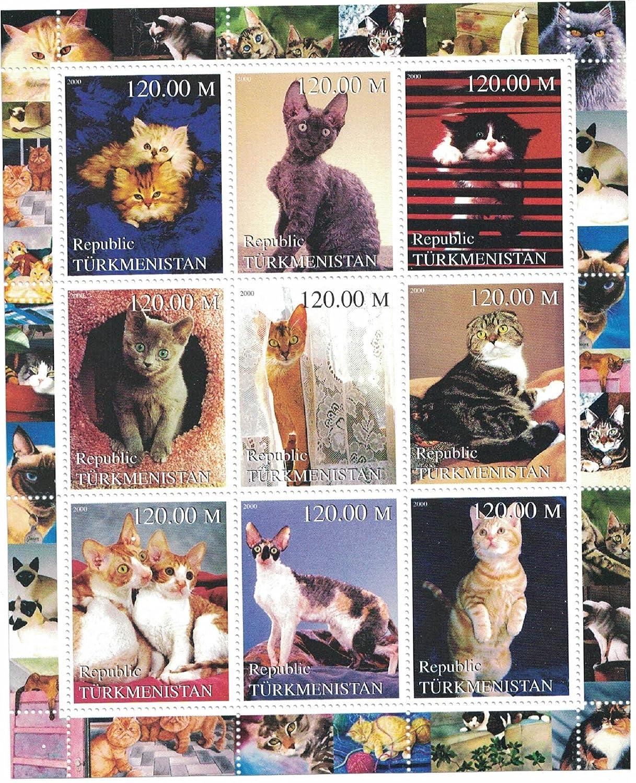 sellos para coleccionistas - perforfated sello hoja con interno gatos/diferentes razas de gatos y gatitos/Turkmenistán: Amazon.es: Hogar