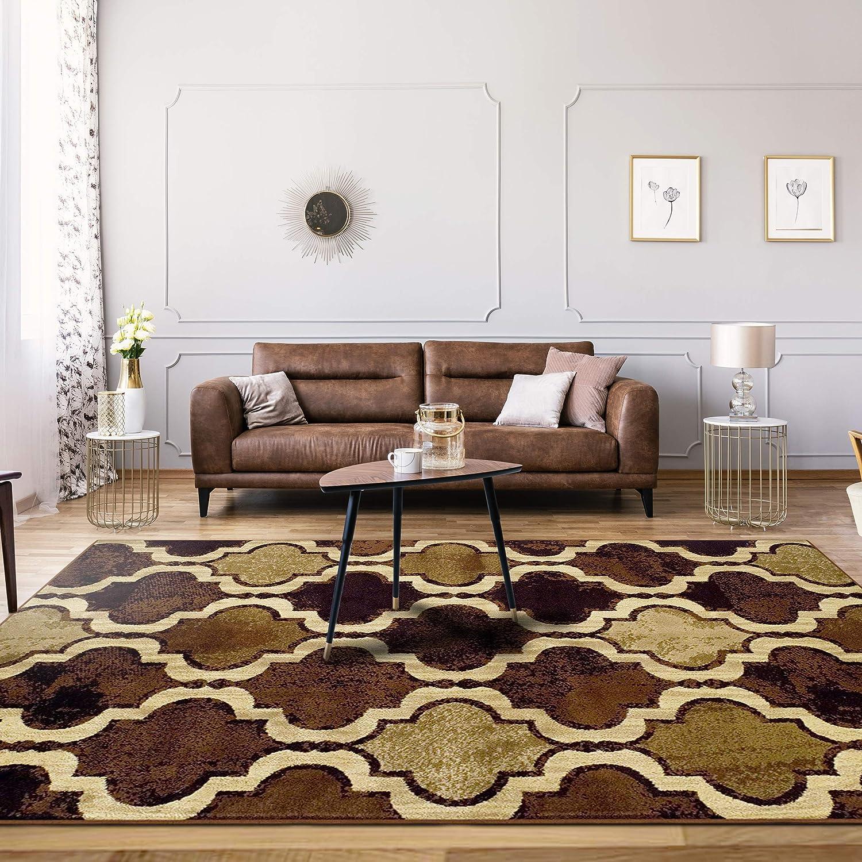 SUPERIOR Eret Indoor Area Rug, Super Soft, Durable, Elegant, Geometric, Trellis Pattern, Mid-Century, Contemporary, Jute Backing, Coffee, 2