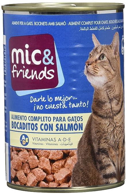 Mic & Friends Comida Para Gato con Salmon - 415 g: Amazon.es ...