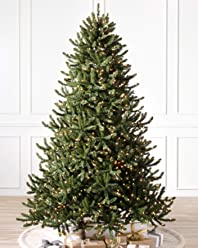 Balsam Hill Adirondack Spruce Prelit Artificial Christmas Tree, 6 Feet, Clear Lights