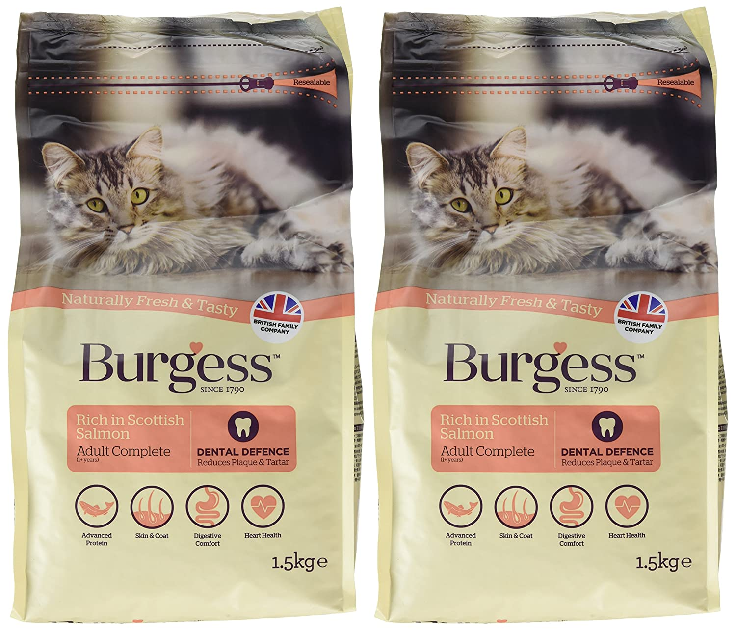 Supacat Adult with Chicken and Duck Complete Food 1.5 kg (Pack of 2): Amazon.es: Productos para mascotas