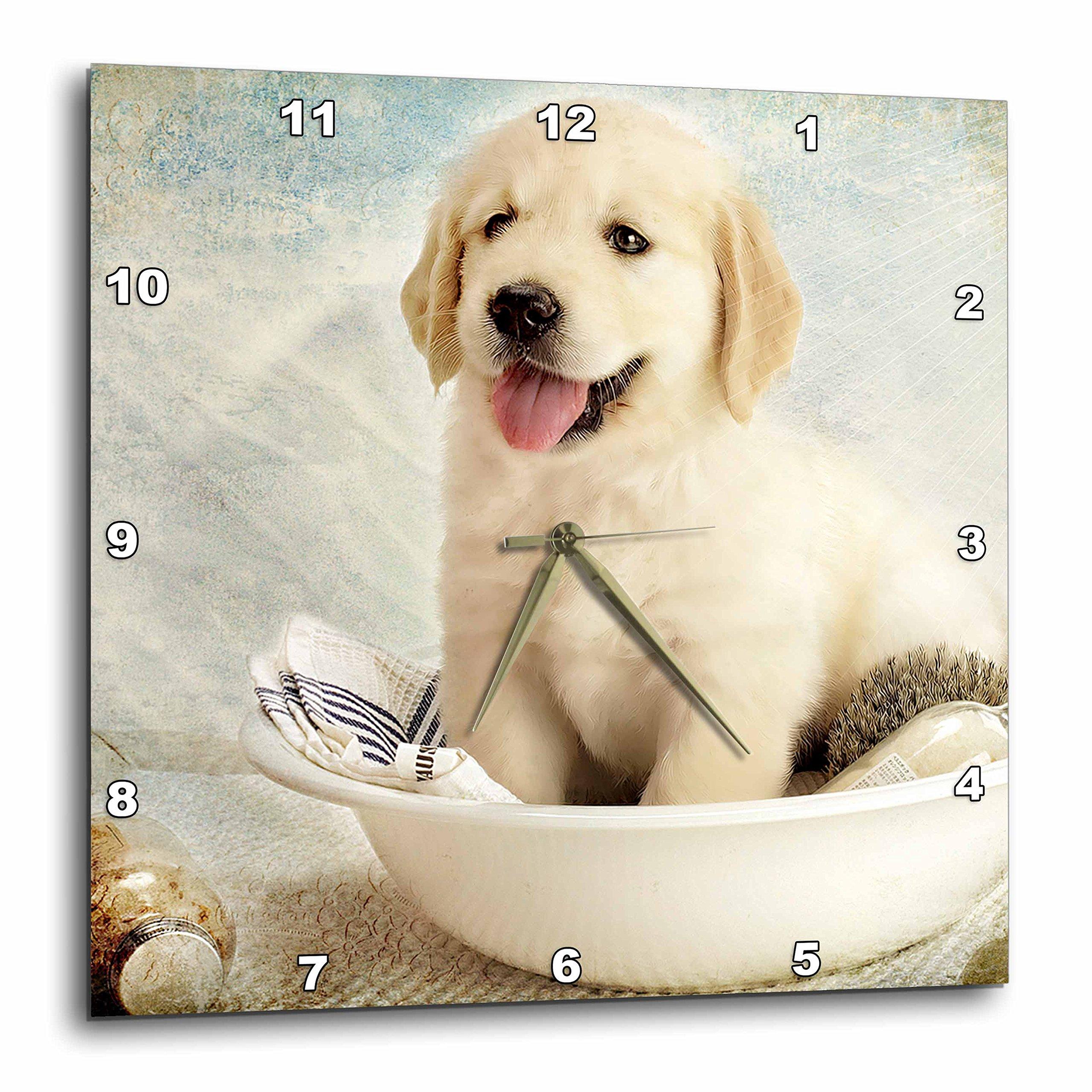 3dRose dpp_172989_3 Cute Golden Retriever Puppy Spa Day Art Photo Courtesy Badestboss. Wall Clock, 15 by 15-Inch