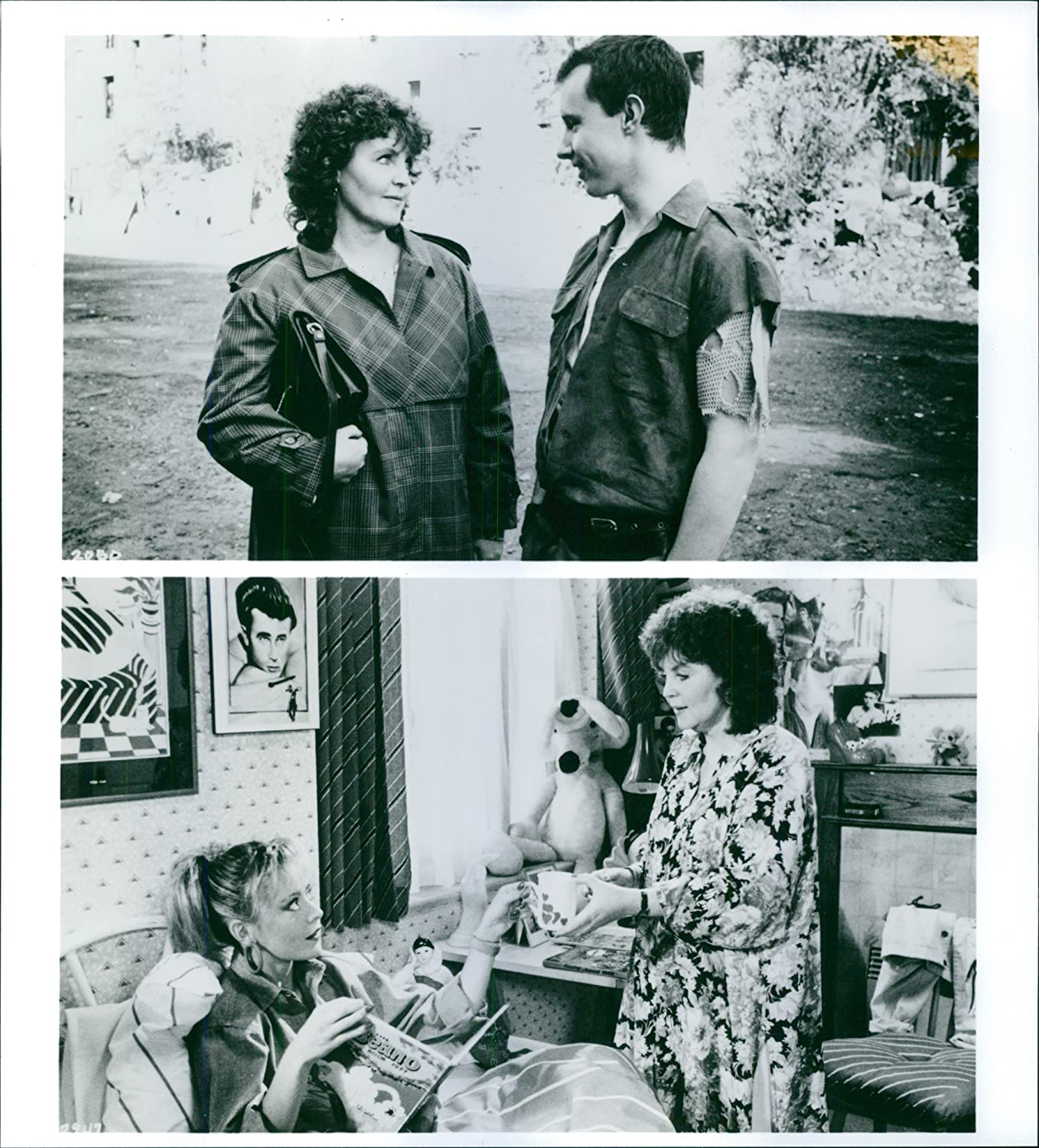 Communication on this topic: Christa Miller, pauline-collins-born-1940/